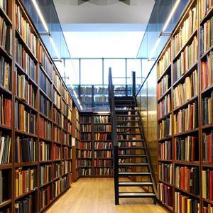 Библиотеки Барды